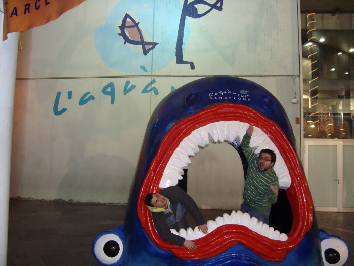 Shark in L'aquàrium, eating my brother and boyfriend :)