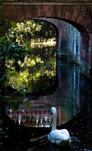 """El laberinto de Horta """"en el mismo que se rodó las escenas del laberinto de la película del perfume"""""""