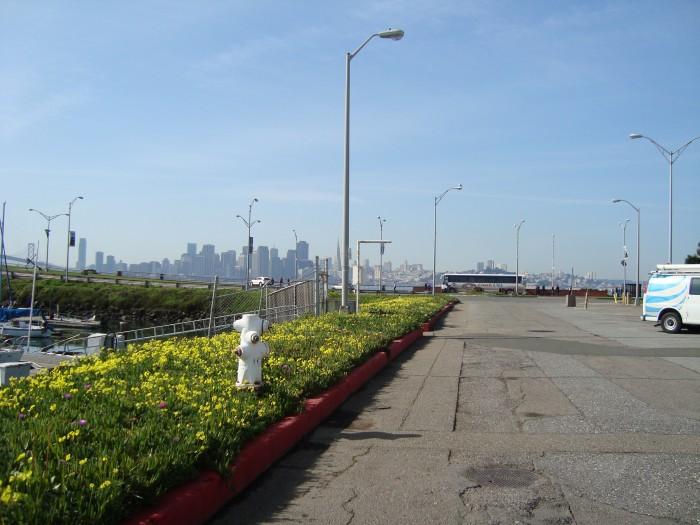Views of San Francisco from Tiburon's Marina